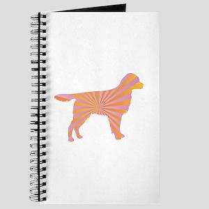 Stabyhoun Rays Journal