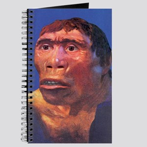 Java Man reconstruction Journal