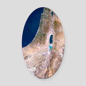 Israel Oval Car Magnet