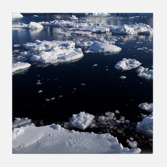 Icebergs Tile Coaster