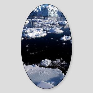 Icebergs Sticker (Oval)
