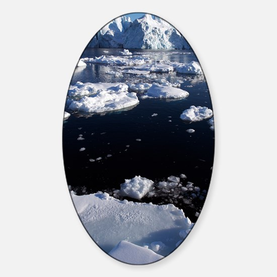 Icebergs Sticker (Oval)