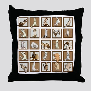 Ferret Squares Shower Curtain Throw Pillow