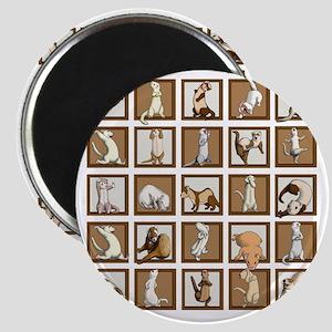 Ferret Squares Shower Curtain Magnet