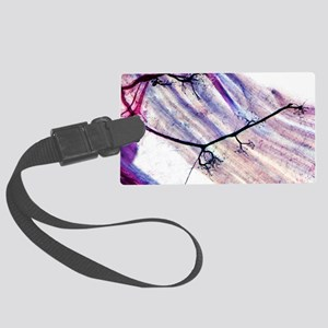 Muscle motor neurones, light mic Large Luggage Tag