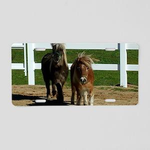 Cute Miniature Horses Aluminum License Plate