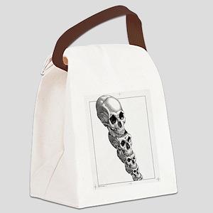 Human evolution, artwork Canvas Lunch Bag