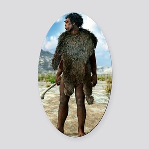 Homo erectus, artwork Oval Car Magnet
