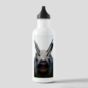 Model dinosaur Stainless Water Bottle 1.0L