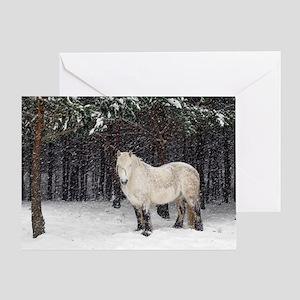 Highland pony Greeting Card