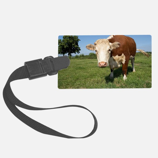 Hereford cow Luggage Tag