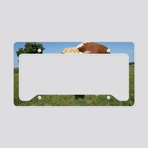 Hereford cow License Plate Holder