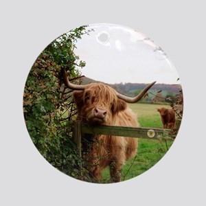 Highland cow Round Ornament