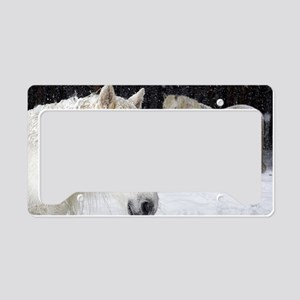 Highland ponies License Plate Holder
