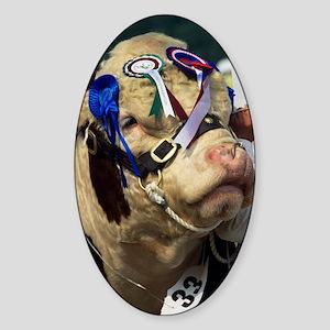 Hereford bull Sticker (Oval)