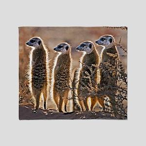 Meerkats Throw Blanket