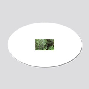 Hemlocks and redwoods in a N 20x12 Oval Wall Decal