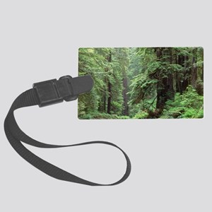 Hemlocks and redwoods in a North Large Luggage Tag