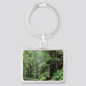 Hemlocks and redwoods in a Nort Landscape Keychain