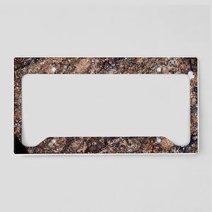 Harzburgite rock License Plate Holder