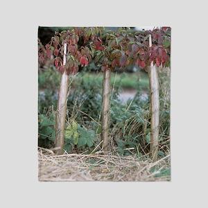 Hedgerow planting Throw Blanket