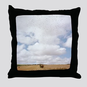 Harvested field Throw Pillow