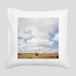 Harvested field Square Canvas Pillow
