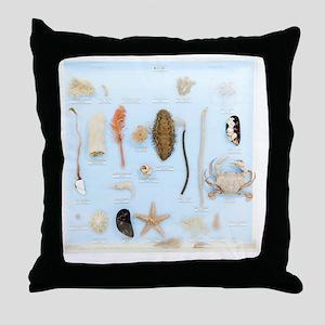 Marine life specimens Throw Pillow