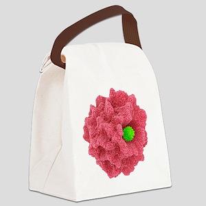 Macrophage engulfing pathogen, ar Canvas Lunch Bag
