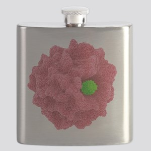 Macrophage engulfing pathogen, artwork Flask