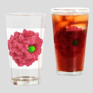 Macrophage engulfing pathogen, artw Drinking Glass