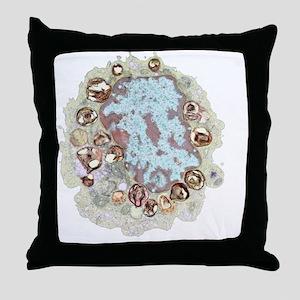 Macrophage cell, TEM Throw Pillow