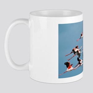 Greater flamingoes Mug