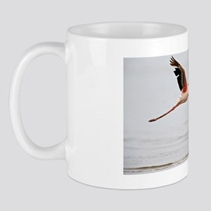Greater flamingo Mug
