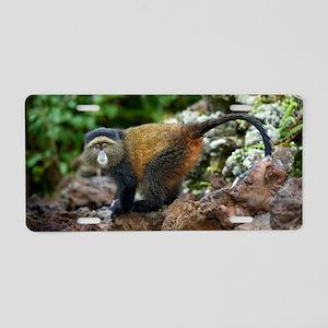 Golden monkey Aluminum License Plate
