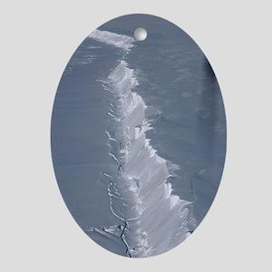 Glacier edge Oval Ornament