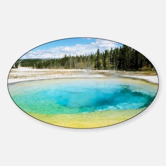Geothermal pool in Yellowstone Nati Sticker (Oval)