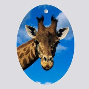 Giraffe Oval Ornament
