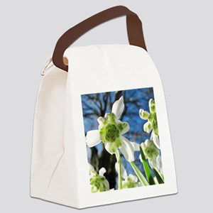 Galanthus nivalis 'Flore Pleno' Canvas Lunch Bag