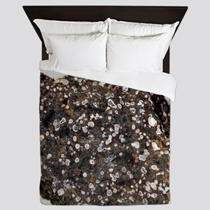 Limburgite Queen Duvet