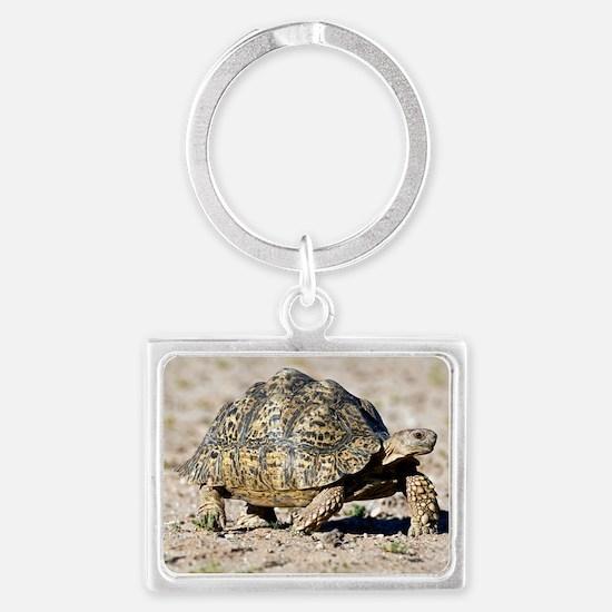 Leopard tortoise Landscape Keychain