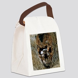 Fossilised skull of a Homo erectu Canvas Lunch Bag