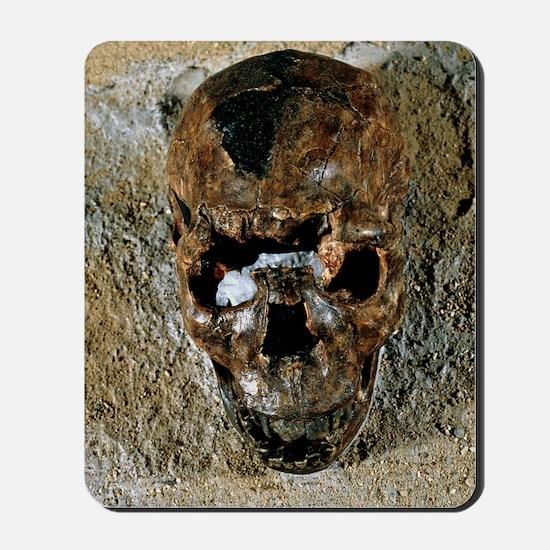 Fossilised skull of a Homo erectus boy f Mousepad