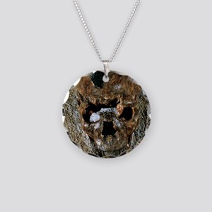 Fossilised skull of a Homo e Necklace Circle Charm