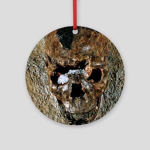 Fossilised skull of a Homo erectus  Round Ornament