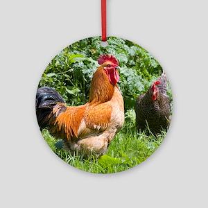 Free-range chickens Round Ornament
