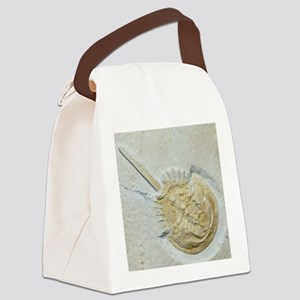 Fossilised horseshoe crab Canvas Lunch Bag