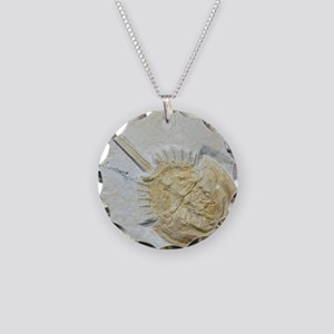 Fossilised horseshoe crab Necklace Circle Charm