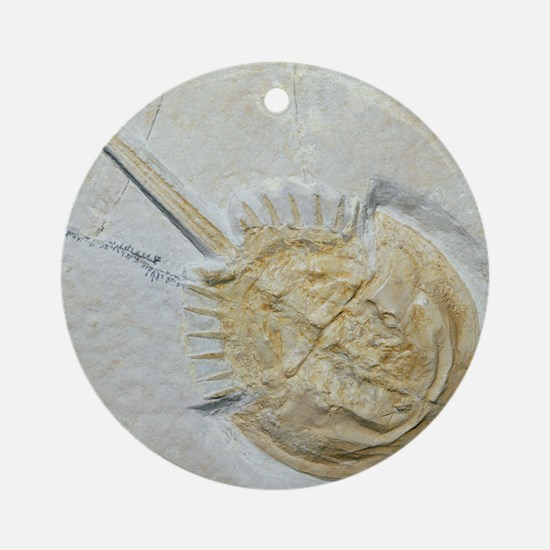 Fossilised horseshoe crab Round Ornament