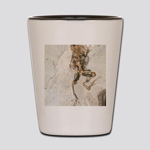 Fossilised frog embedded in rock Shot Glass